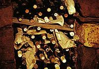 Old bottles of wine in wine cellar, Rust, Burgenland, Austria