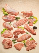 Still life: Veal cuts. Shin, loin, silverside, fillet, rump, rib, loin chops, topside, veal shanks, sliced topside, loin cutlets