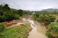 Ecuador - Manabí Province. Timber transportation by water