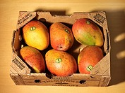 Mangoes in a Box from Ecuador
