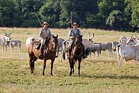 europe, italy, tuscany, alberese, uccellina park, ranch alberese, cowboys