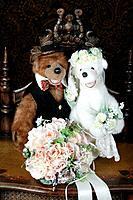 The wedding of Teddy bear