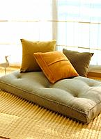 Sofa in the living room (thumbnail)