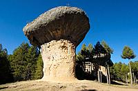Rock formations at the Enchanted City (´La Ciuda Encantada´). Cuenca province, Castilla-La Mancha, Spain.