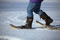 Snowshoes,