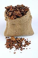 Cocoa peel, Cortex Cacao, Theobroma cacao, Theobromin, cut out, obejct