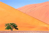Sand Dunes in Namib-Naukluft National Park, Namib Desert, Sossusvlei, Namibia, Africa