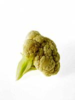 One Cauliflower Floret