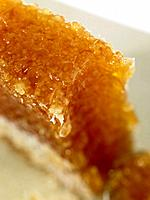A piece of Honey Comb