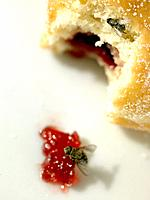 Food _ Doughnut with Jam and Fly