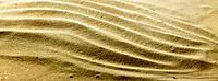 Rippled sand