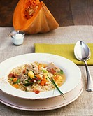 Pork, vegetable and barley stew