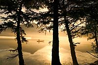 Canoeist on Mendenhall Lake in Morning Mist SE AK Summer Silhouette
