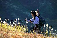 Woman hiking through tall grass backlit by sunlight Chugach State Park Southcentral Alaska Autumn