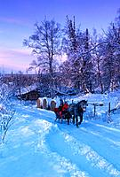 Couple on Sleigh Ride Matanuska Valley SC AK
