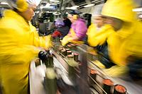Cannery workers prepare salmon at Peter Pan Seafoods in Bristol Bay Dillingham Alaska