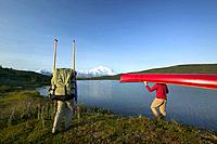 Couple Portaging Canoe to Wonder Lake Over Tundra AK IN Denali NP Summer