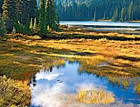 Late afternoon autumn sunlight on Reflection Lake, Mt. Rainier, Mt Rainier National Park, Washington State, USA