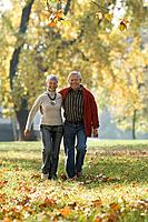 Senior couple walking in a park (thumbnail)