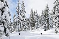 Snowshoers on montain at Mount Seymour Provincial Park in North Vancouver British Columbia Canada