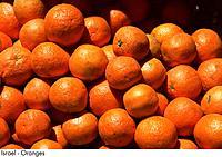 Israel _ Oranges