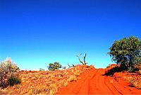 Australia _ North _ Rainbow Vallee