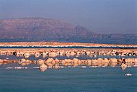 Israel _ The Dead Sea