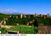 Spain _ Andalousia _ Grenada _ Alhambra Spain