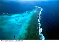 New Caledonia _ Coral Reef