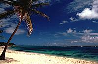 French Caribbean - Caribbean Islands - Marie Galante - Capesterre - Beach of the Feuillere (thumbnail)