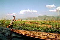 Myanmar _ Inle Lake _ Floating Garden