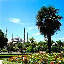 Turkey - Istanbul - Sultanahmet District - The Blue Mosque (thumbnail)