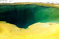 USA _ National Park _ Yellowstone _ Green Spring