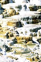 USA _ National Park _ Yellowstone _ Mammoth Hot Spring _ Canarie Spring