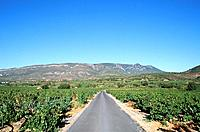 Aude _ Pays Cathare _ Region de Corbieres