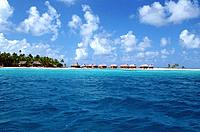 French Polynesia _ Tikehau's atoll _ Tuamotu