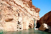 Tunisia - The South - Chott el Jerid Region - Montain Oasis - Tozeur Region - Tamerza Oasis - The... (thumbnail)