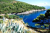 Croatia _ Ile de Hvar _ Hvar _ Calanque