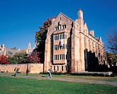 Yale University,New Haven,Conneticut,USA
