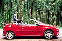 Middle_Aged Korean Woman Sitting in Convertable