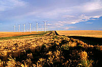 Stateline Wind Project with power generator windmills. Walla Walla County, Washington, USA