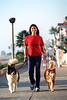 A woman fitness walking with her two dogs