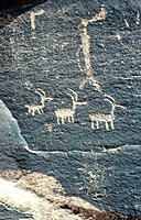 Petroglyphs. Petrified Forest National Park. Arizona. USA