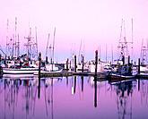 Commercial fishing fleet at dawn, Charleston boat basinSouthern Oregon coast, USA
