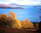 Loch Lomond, near Luss. Scotland
