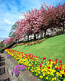 West Princes Street Gardens. Edinburgh. Scotland
