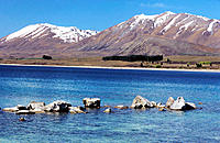 Tekapo Lake. South Island. New Zealand