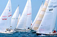 Sailboat regatta
