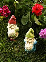 Two garden gnomes (thumbnail)