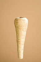 Parsnip
